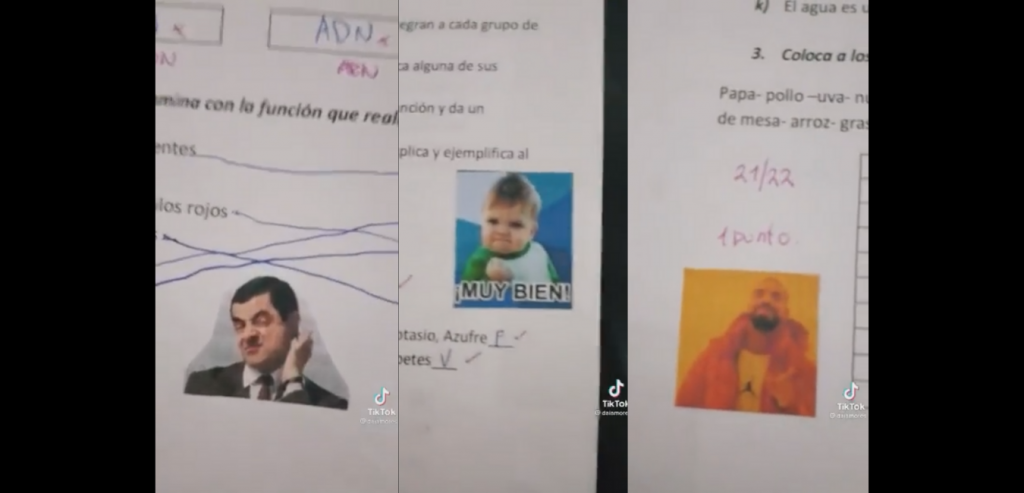 Teacher GRADES her students' exams WITH MEMES